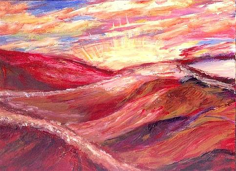Desert Sunset  by Mary Sedici