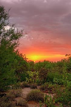 Desert Sunset v1836 by Mark Myhaver