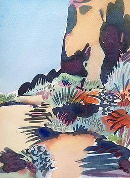 Desert Trail by Virginia Vovchuk