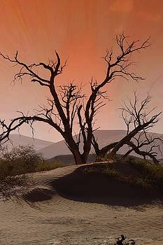 Desert tree 1 by Jaqueline Briel