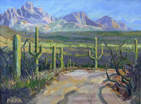 Desert View II by Ralph Papa