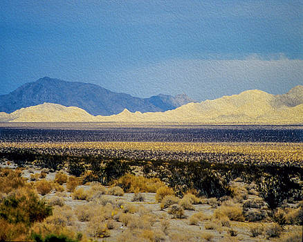 Desert View One by Steven Howes