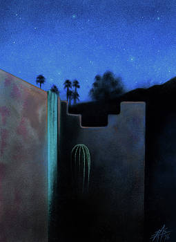 Desert View with Starlight and Cactus at Anza-Borrego  by Robin Street-Morris