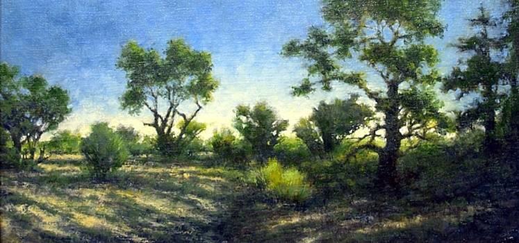 Desert Wash by Jim Gola