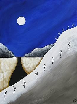 Desert Winter by Heidi Moss