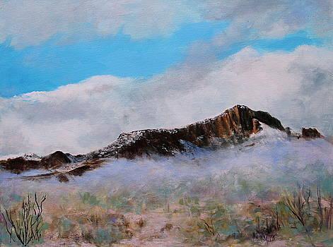Desert Winter by M Diane Bonaparte