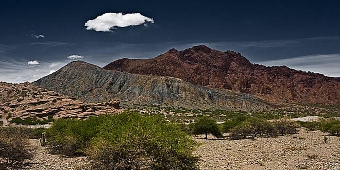 Deserted Desert by Ron Dubin