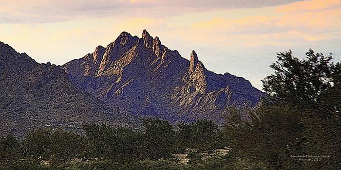Desert's Last Light Panoramic by Randall Thomas Stone
