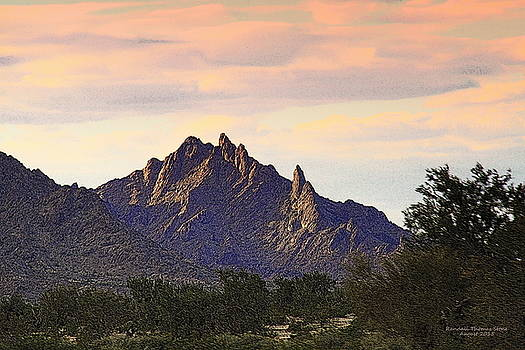 Desert's Last Light by Randall Thomas Stone