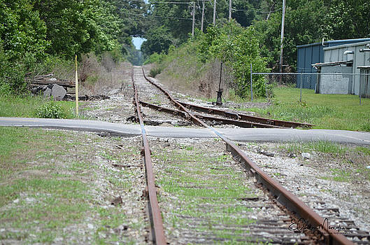 Desolate Rails by Gordon Mooneyhan