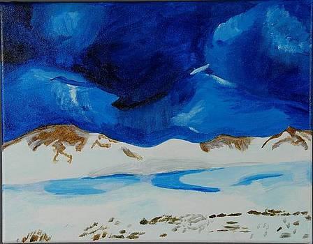 Destin Beach by Emory Goins