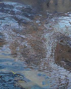 Detail 6 of Brook by Robert Keseru