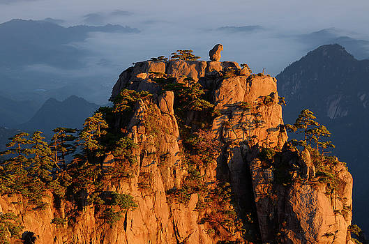 Reimar Gaertner - Detail of Monkey watching the Sea Peak at sunrise with fog in va