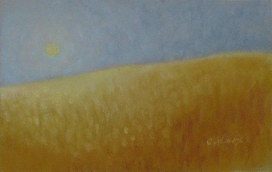 Detail of Rising Moon in Katrina frame by Cheryl Brumfield Knox