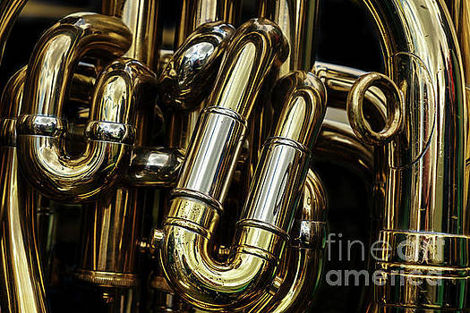 Detail of the brass pipes of a tuba by Jane Rix