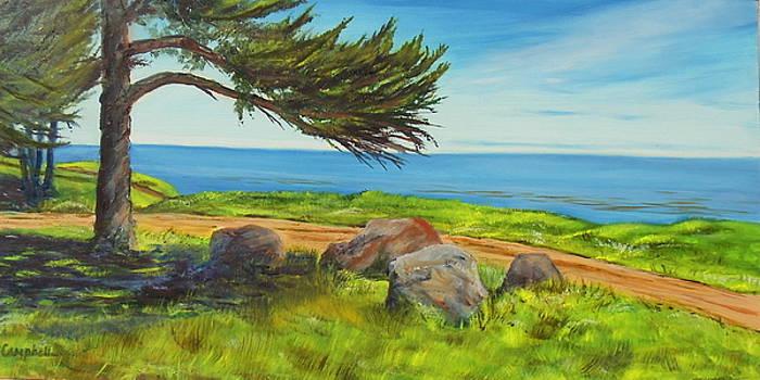 Devereux Beach Access  by Jeffrey Campbell