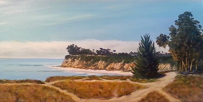 Short walk to Devereux Point by Jeffrey Campbell