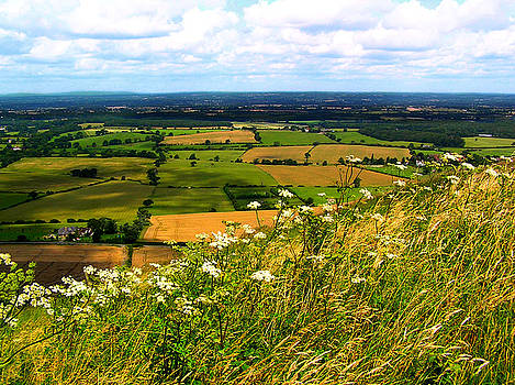Devil's Dyke in Somerset England by Jen White