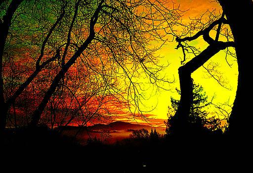 Devil's Mountain by Jennifer Cadence Spalding