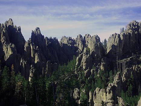Devil's Peak by Michelle Hoffmann