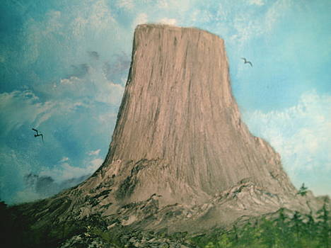 Devils Tower 2 by Jim Saltis