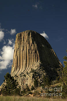 Devil's Tower View by Natural Focal Point Photography