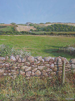 Devon field and drystone wall by Martin Davey