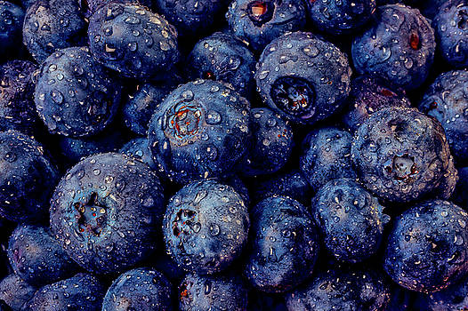 Dew Covered Blueberries by Garry Gay