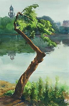 Dhanmondi Lake 03 by Helal Uddin