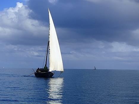 Dhow off Zanzibar by Jill Friedman