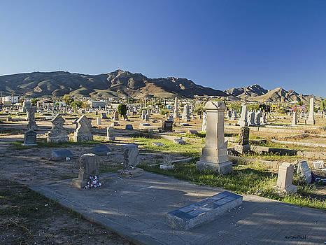 Allen Sheffield - Dia de los Muertos 2