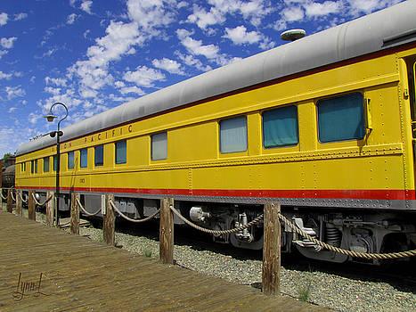 Diagonal on the Rails by S Lynn Lehman