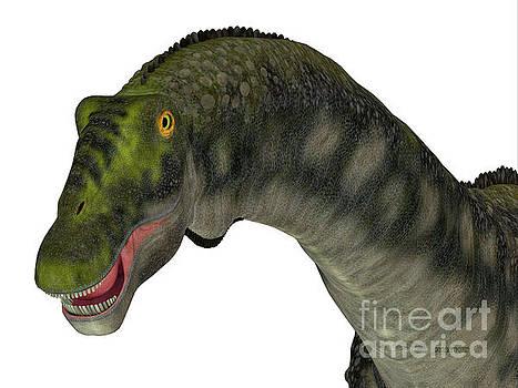 Corey Ford - Diamantinasaurus Dinosaur Head