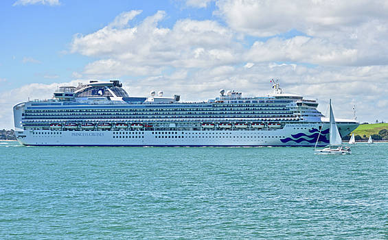 Diamond Princess In Auckland Harbour by Clive Littin