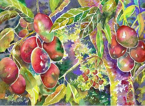 Diane's Mangos by Ann Nicholson