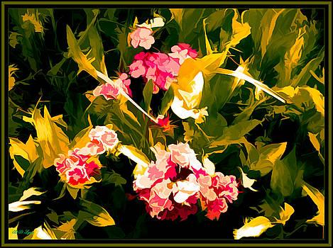 Dianthus Flowers As Art by Debra Lynch