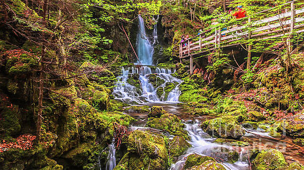 Dickson Falls in Fundy National Park by Claudia M Photography