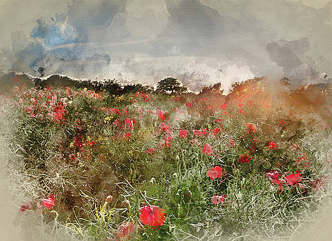 Digital watercolour painting of Poppy field landscape in English by Matthew Gibson