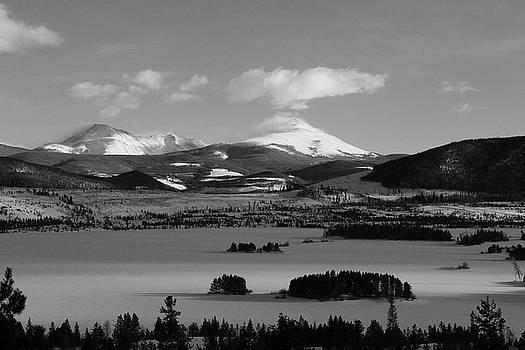 Dillon in Winter BW by Marie Leslie