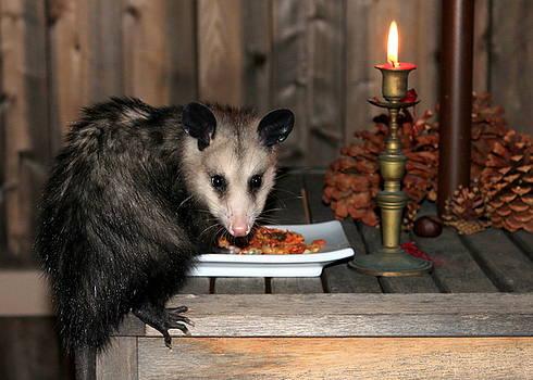 Dining Possums IV by Ron Romanosky