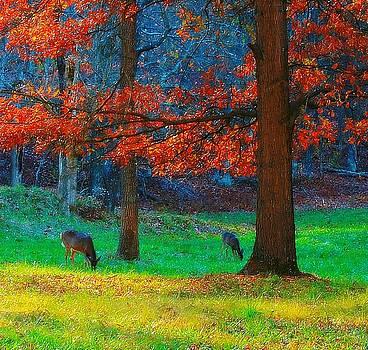 Dinner Under the Trees by Steve Warnstaff
