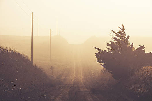 Dirt Road into the Foggy Sunrise by Anita Hohl