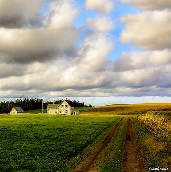 Dirt Road to Old Homestead, Mabou Ridge by Ken Morris