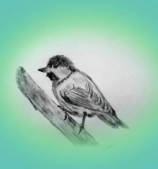 Dirty Bird by Nelma Grace Higgins