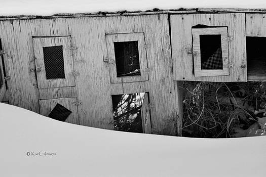 Discarded Pigeon Coop #1 Black and White by Kae Cheatham