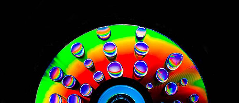 Disco Rising by Ryan Tarrow