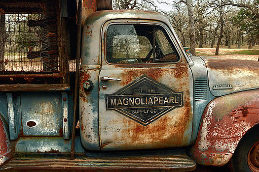 Discover MagnoliaPearl by William Rockwell