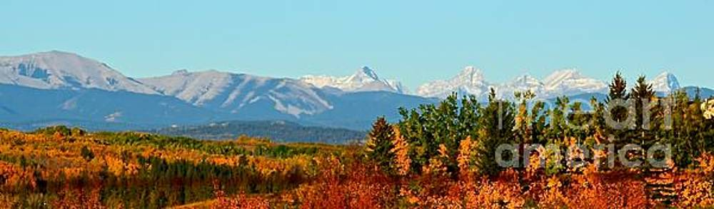 Discovery Ridge by Stephanie  Bland
