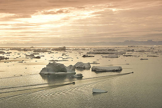 Disko Bay Sunset by Michele Burgess