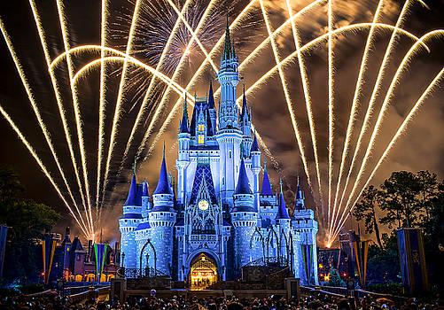 Disney World by Anna Rumiantseva